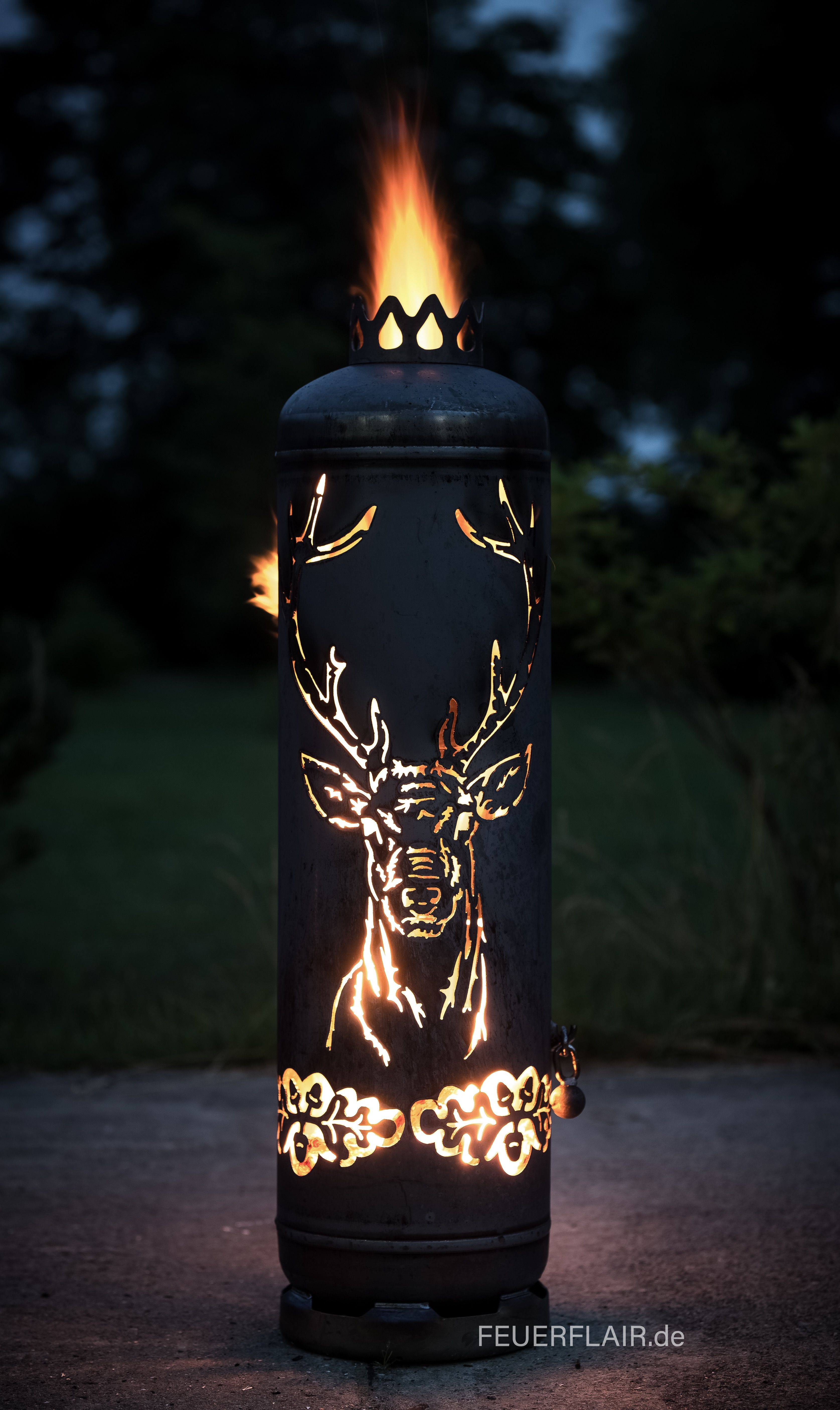 Photo of Fire pit deer gas bottle