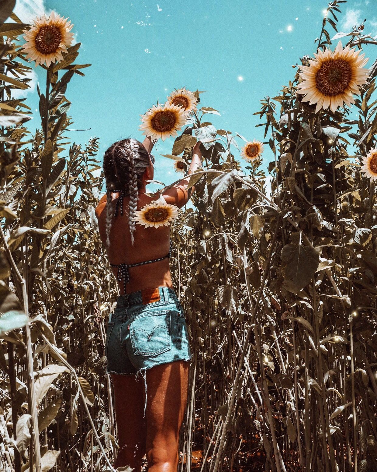 Bay Australia Vibes Summer aesthetic summer inspo swimwear fashion sunflowers sunflower field The Effective Pictures We Offer You About summer outif A quality picture can...