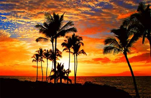 Maui Set New Visitor Arrival Record in 2015 | Maui Now