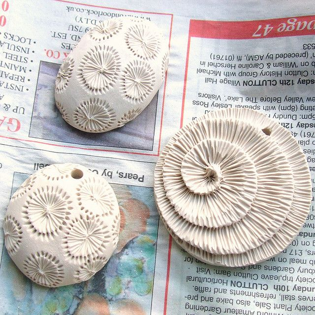 fossil coral 005 | Fossils, Clay and Polymers