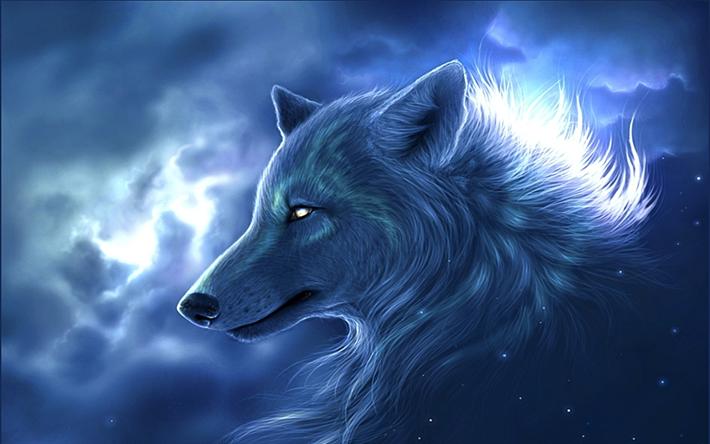 Telecharger Fonds D Ecran Loup Blanc Les Predateurs La Nuit L Art Le Loup Animal Wallpaper Wolf Wallpaper Fantasy Wolf