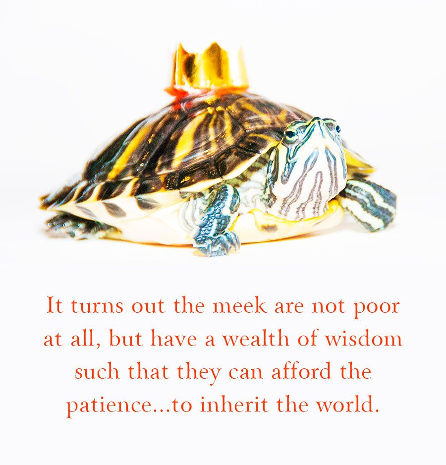 Patience Is The Key To Paradise Turkish Proverb Patience Brahma Kumaris Meditation Spiritual Workshop