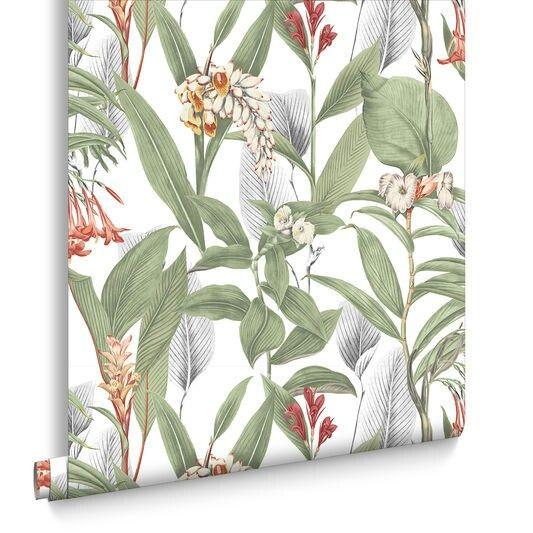 Botanical Powder Wallpaper Graham And Brown Wallpaper Walls