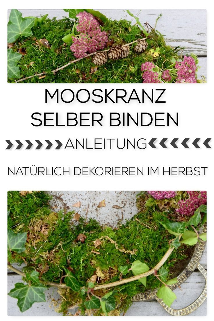 Photo of I will show you how to tie a beautiful moss wreath for autumn yourself. D …