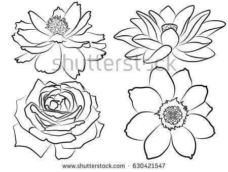 Collection Of Silhouette Flowers Isolated On White Background