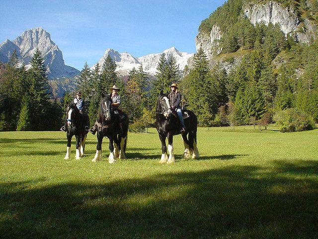 Reiten in der Urlaubsregion Pyhrn-Priel - Foto: Fletzer by Urlaubsregion Pyhrn-Priel, via Flickr