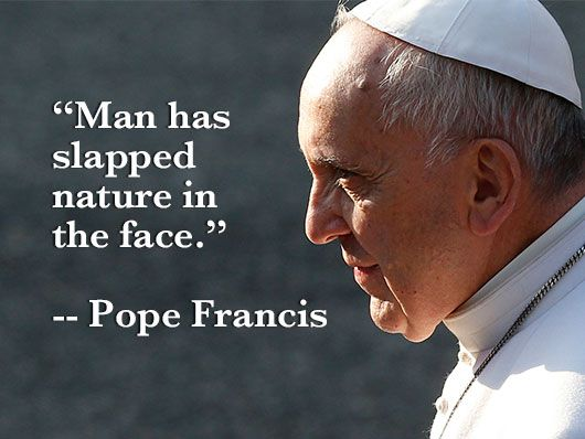 From Bustedhalo Com Pope Quotes Pope Pope Francis