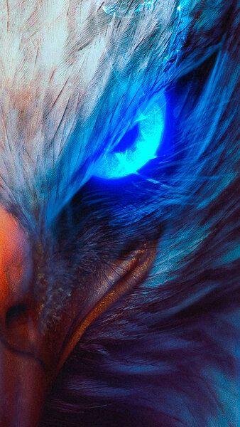 Eagle Eye Digital Art 4k Hd Mobile Smartphone And Pc Desktop Laptop Wallpaper 3840x2160 1920x1080 Eagle Wallpaper Digital Wallpaper Phone Wallpaper Design