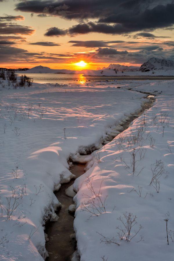 Golden Lofoten Sunset by Dominik Beedgen | Norway