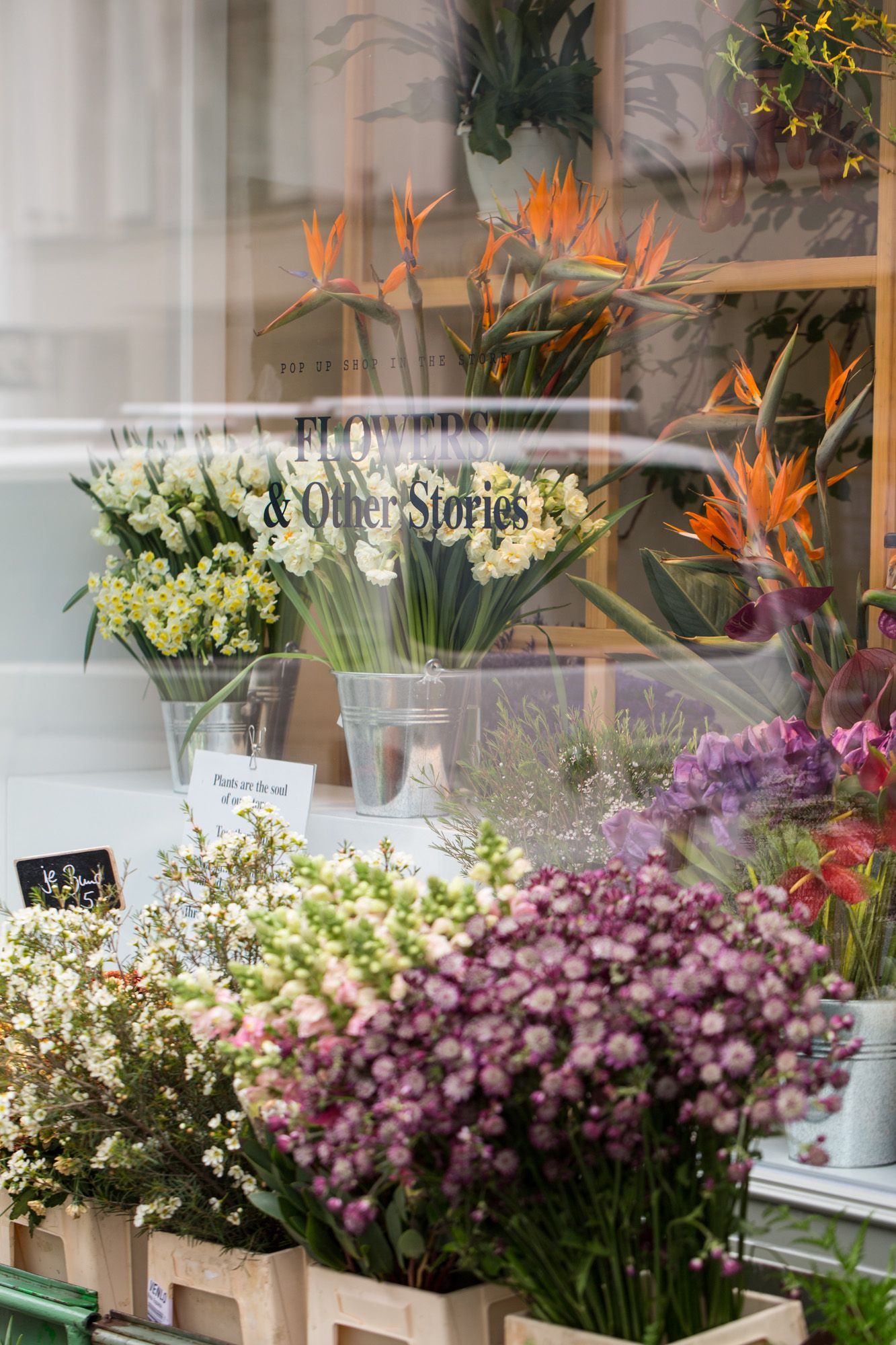 Other Stories Flower Pop Up Shop In Mitte Berlin Flower Store Flower Arrangements Flower Shop