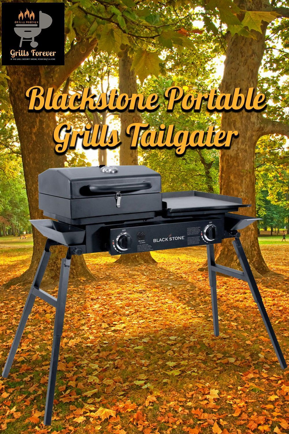 Blackstone Stainless Steel Outdoor Grill Best Flat Top Gas Grills Used Electric