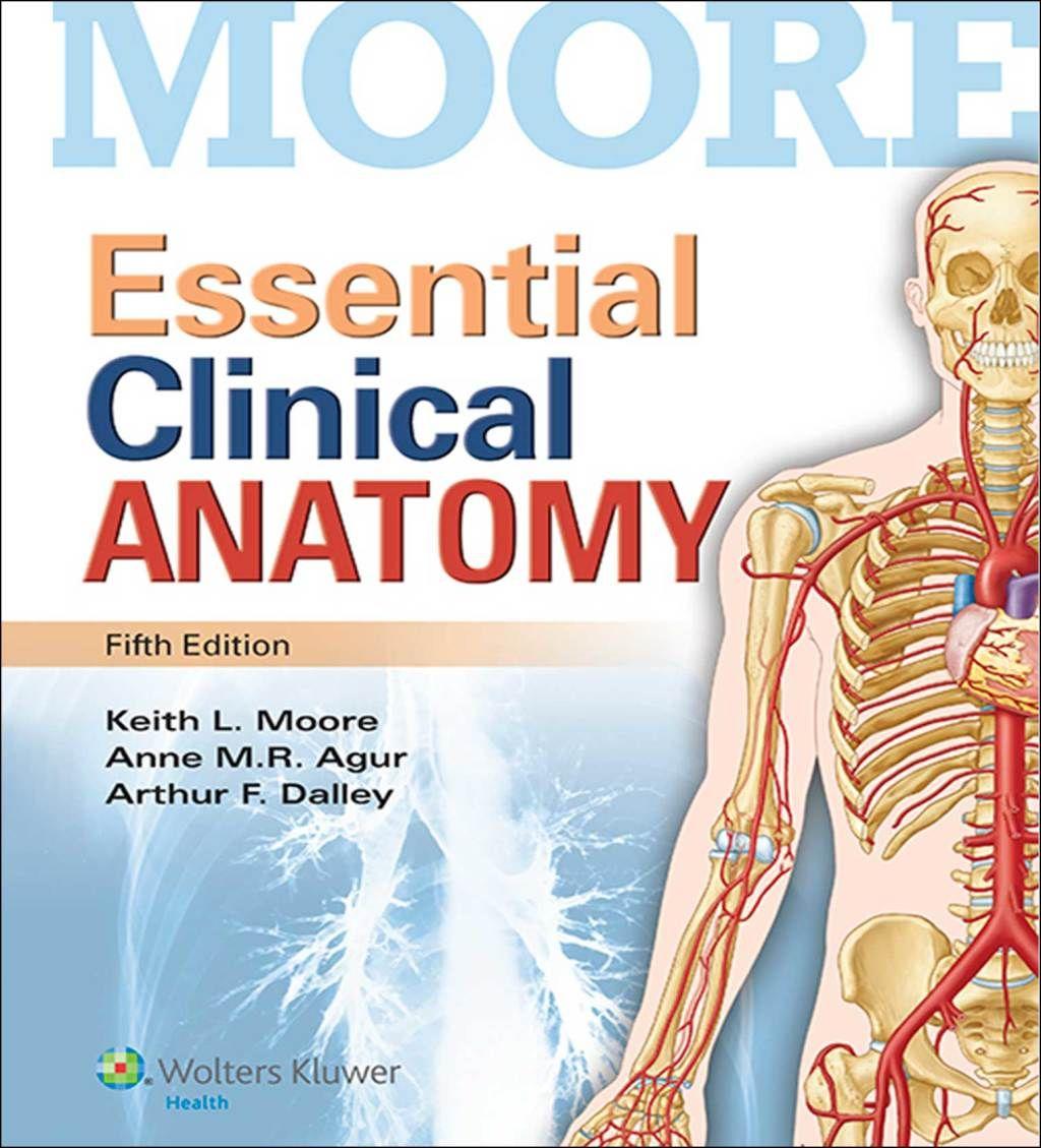 Essential Clinical Anatomy (eBook Rental) in 2019