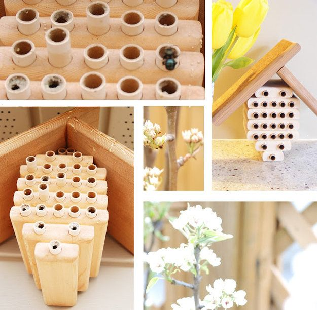 Paper Tubes Bee Hive Plans | 16 Bee Hive Plans - Build a safe place to save the bees! at http://pioneersettler.com/best-bee-hive-plans