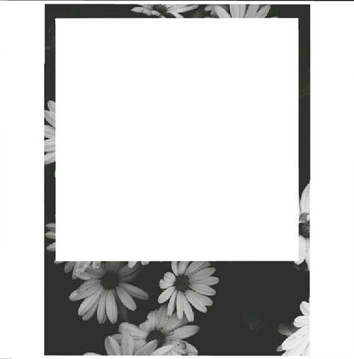 polaroid frame | p.g. on We Heart It | new and need to organize ...
