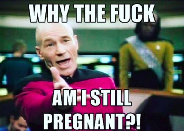 9026a9d0ecbe7e3c65e080ecdb342cbc 50 funny pregnancy memes that will make you pee without even