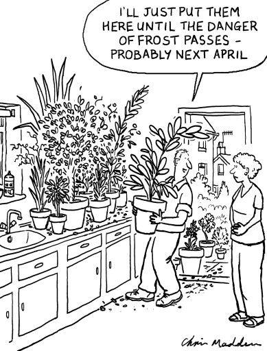 Garden Joke Gardening Humor Gardening Jokes Gardening Memes
