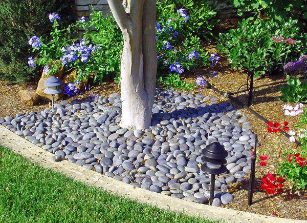 Landscaping Pebbles Use A Dozen Gravel Landscape Landscaping Around Trees Landscaping With Rocks Pebble Landscaping