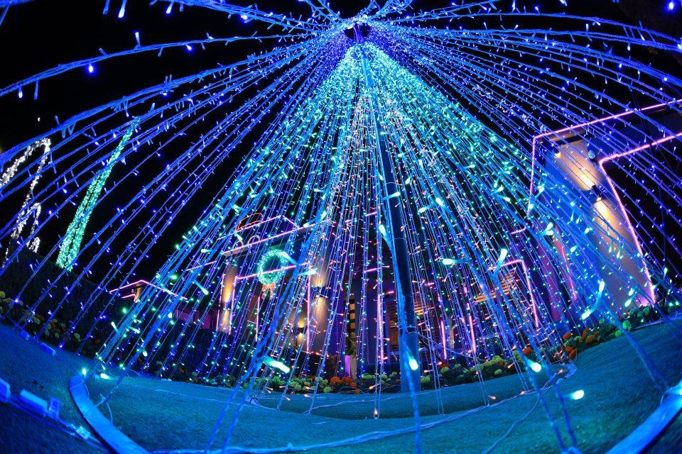 Where Are The Best Christmas Lights In Perth? - Perth - by Sarah M ...
