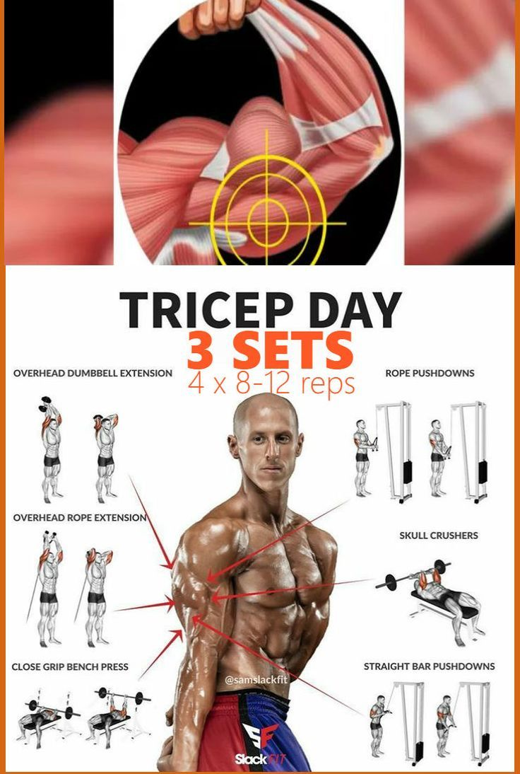 6 Exercises To Get Perfectly Shaped Triceps   Muskelaufbau, Muskel ...