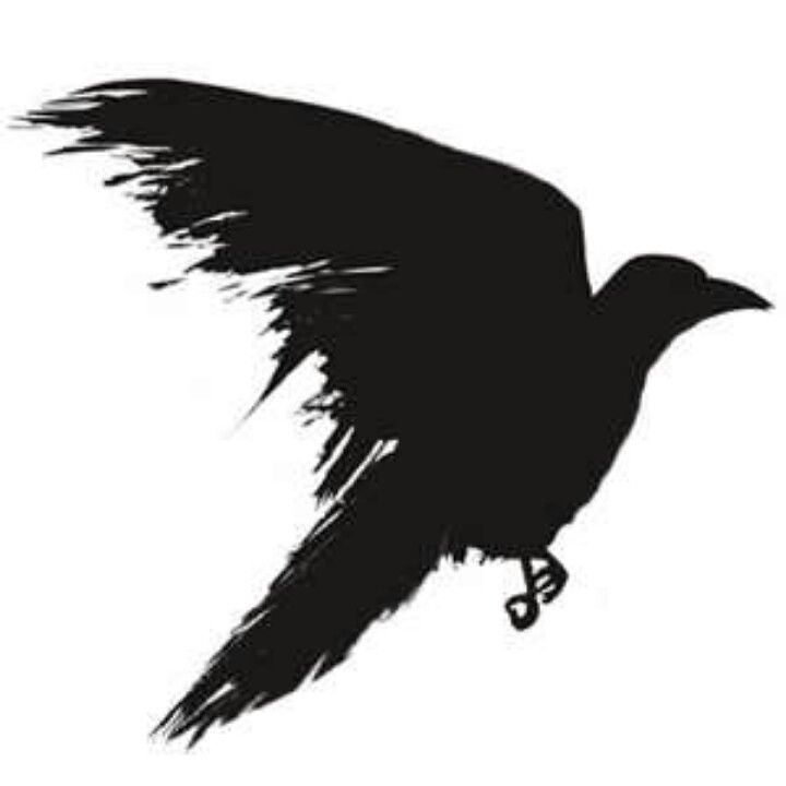 Over Top Crow View Flight