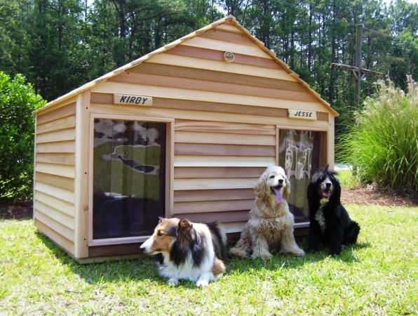 5 Simple Tips To Keep Animal Pests Away Heated Dog House Cool