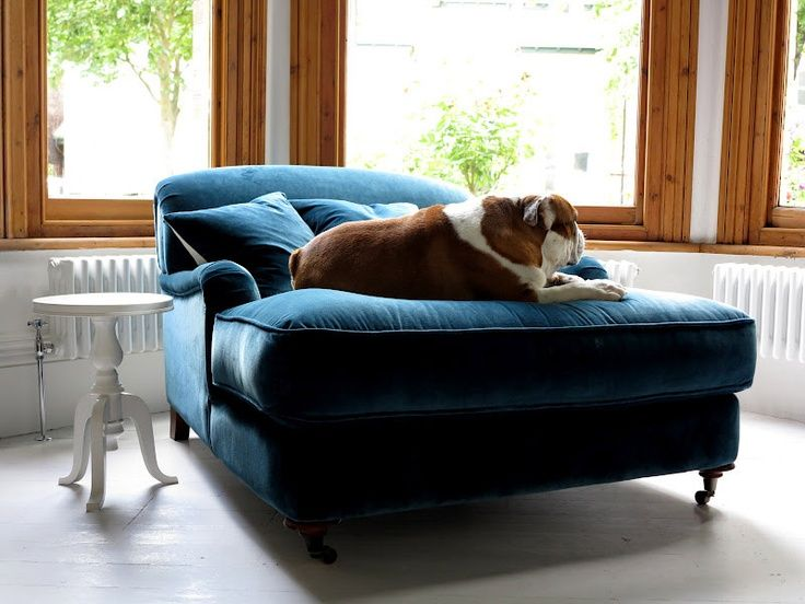 Park Art My WordPress Blog_Blue Velvet Chair And A Half