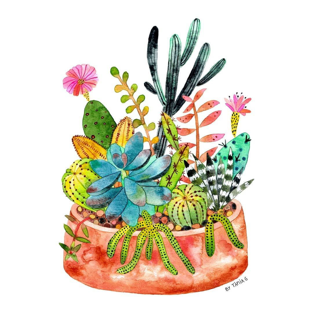 Cactus And Succulent Terrarium Painted With Watercolor By Tània Garcia.  #watercolor #watercolorpainting #