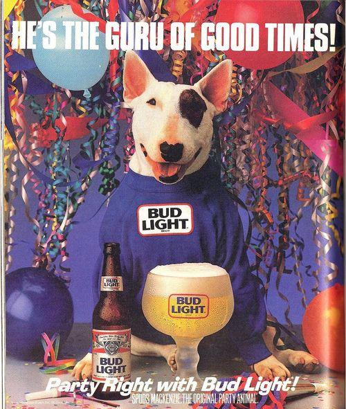 Spuds mackenzie bull terrier featured in a popular series of bud light beer aloadofball Images