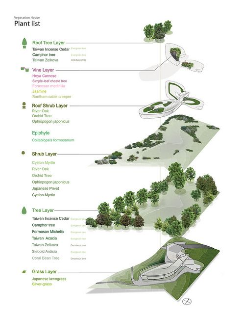 vegetation house 16 jpg landscape plans rh pinterest com
