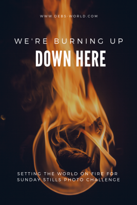 We Re Burning Up Down Here World On Fire Burns How To Level Ground