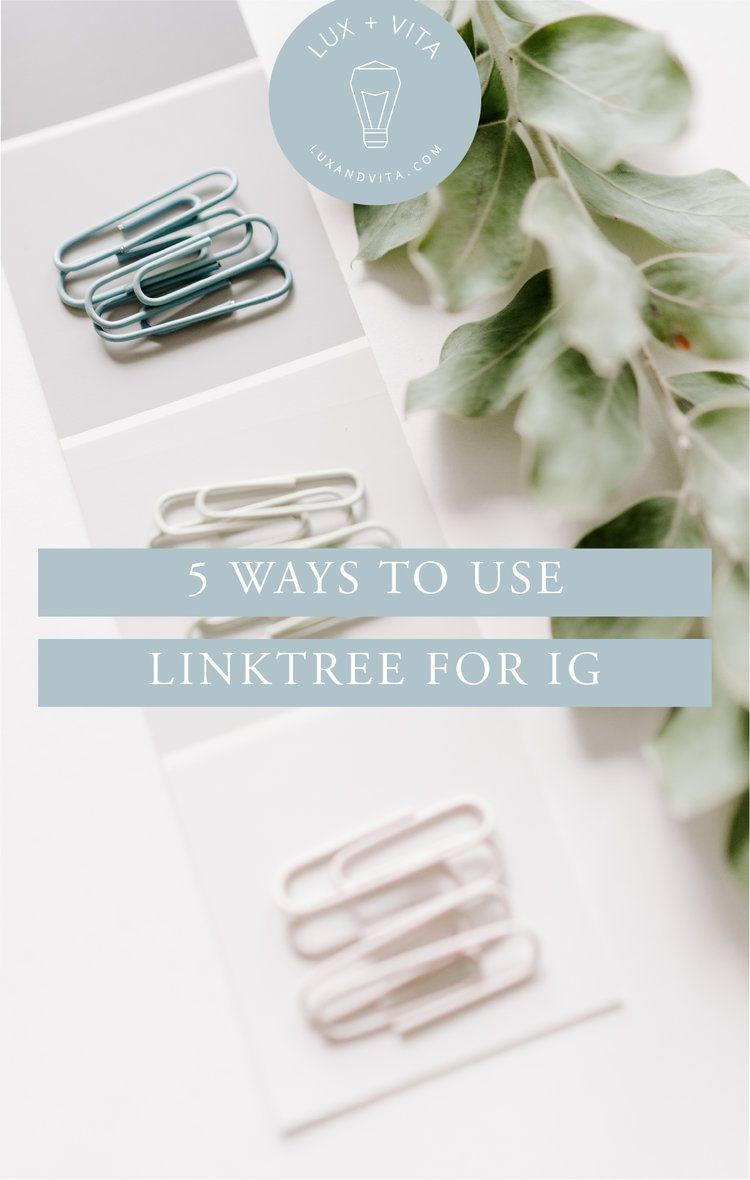 how to add linktree to tiktok bio