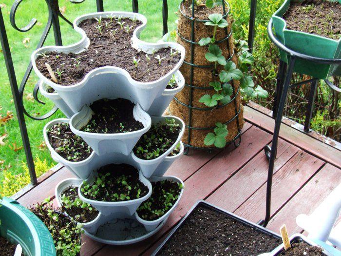 Fesselnd Bio Garten Gestalten Terrasse Ideen