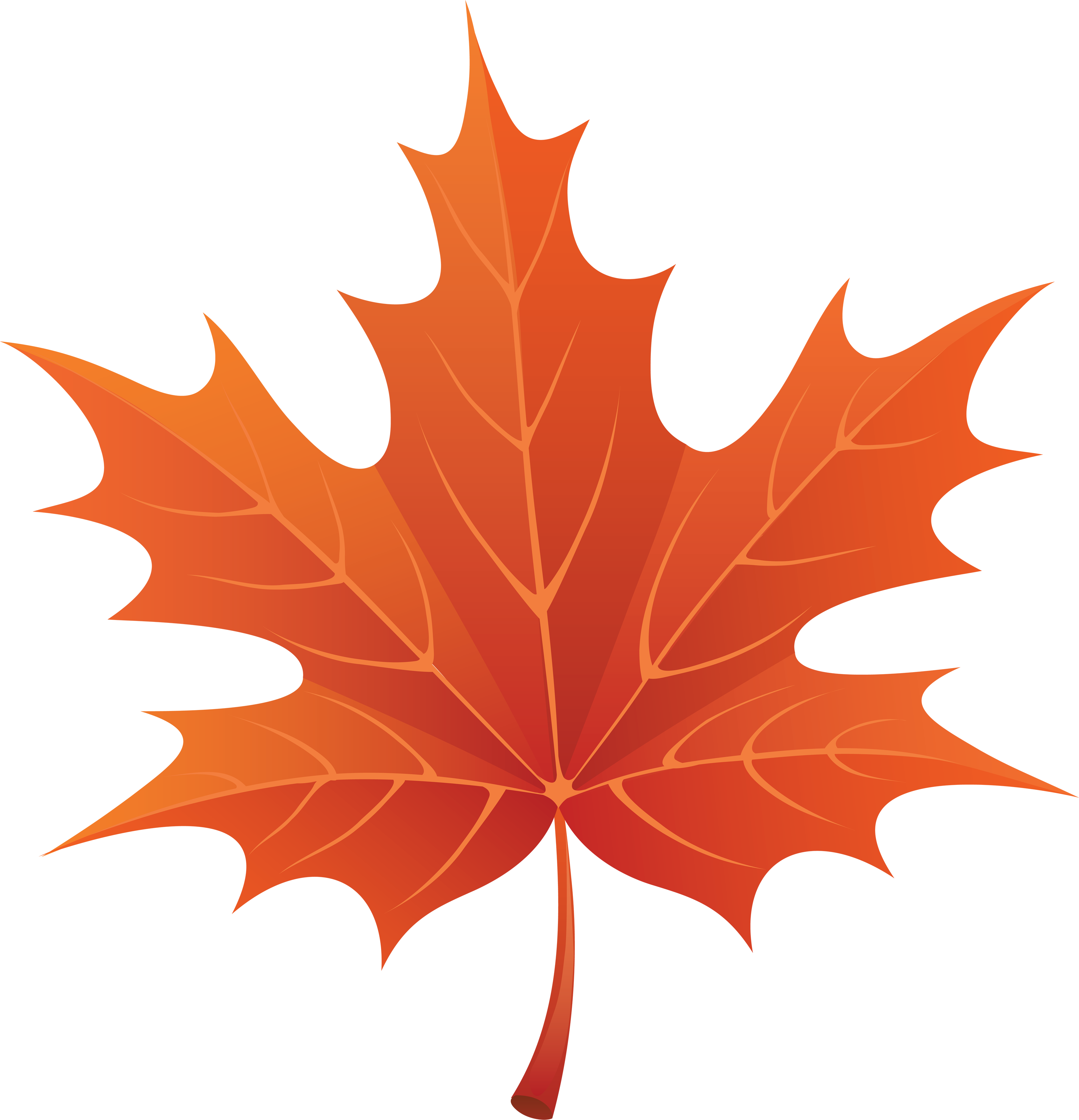 hight resolution of fall leaf clipart google search
