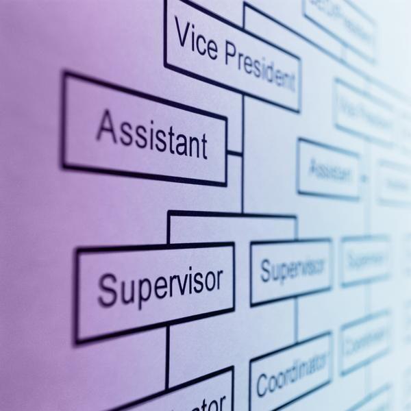 A Beauty Salonu0027s Organizational Structure Organizational structure - company organization chart