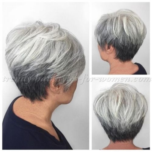 Short Hairstyles For Women Over 50 Short Hairstyles Over 50  Short Hairstyle For Grey Hair  Hair Do