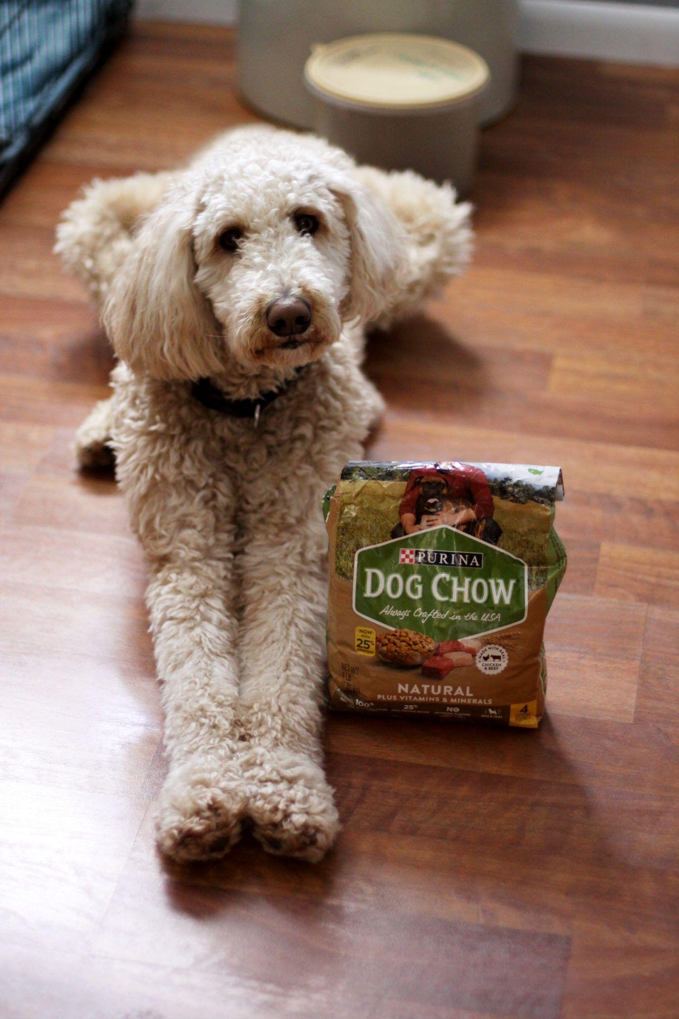 Choosing Quality Dog Food At Meijer Dog Food Recipes Purina Dog