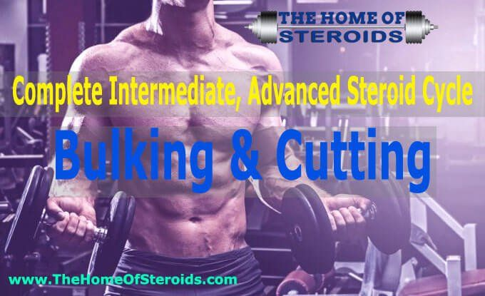 Advanced Steroid Cycles