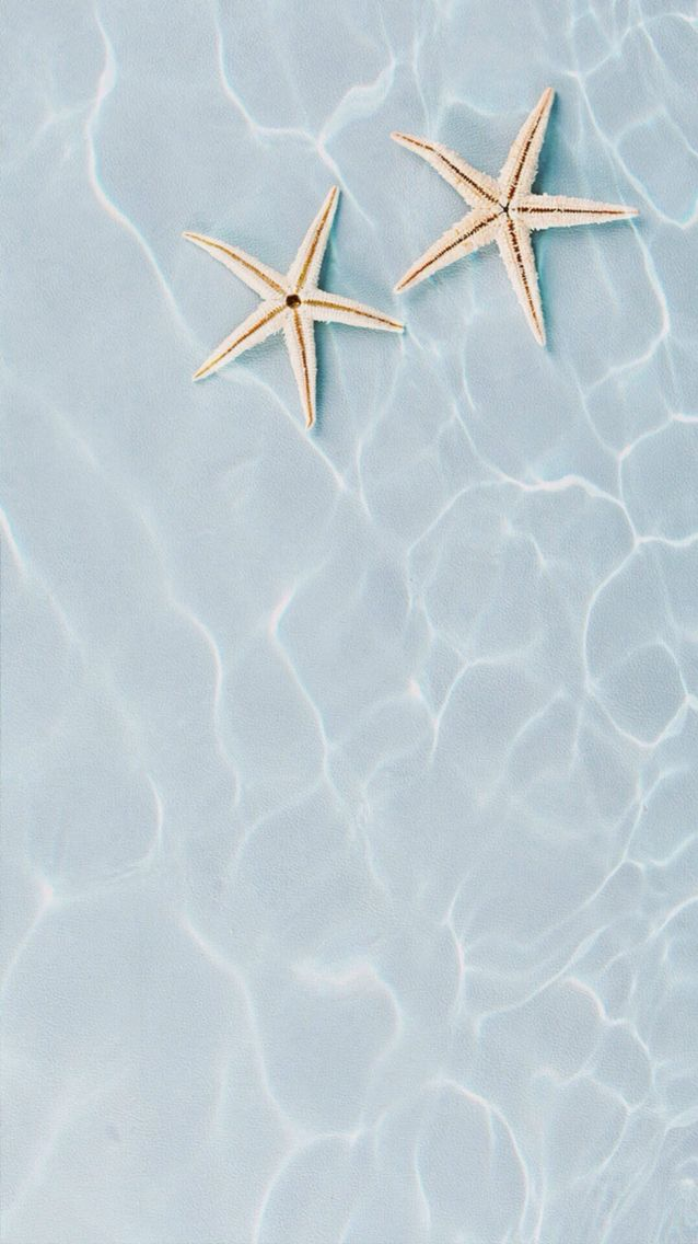 Star Fish Find More Summer Themed Wallpapers For Your IPhone Android Prettywallpaper