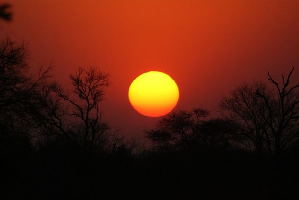 See the sunset in Kruger National Park, South Africa