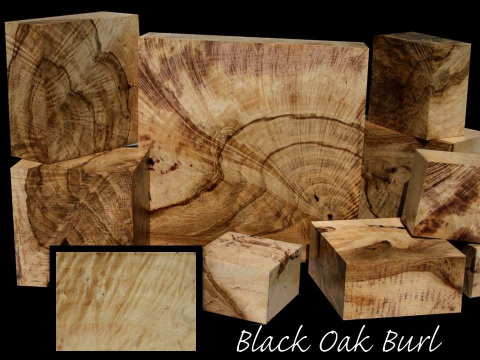 Exotic wood black oak burl related to red this