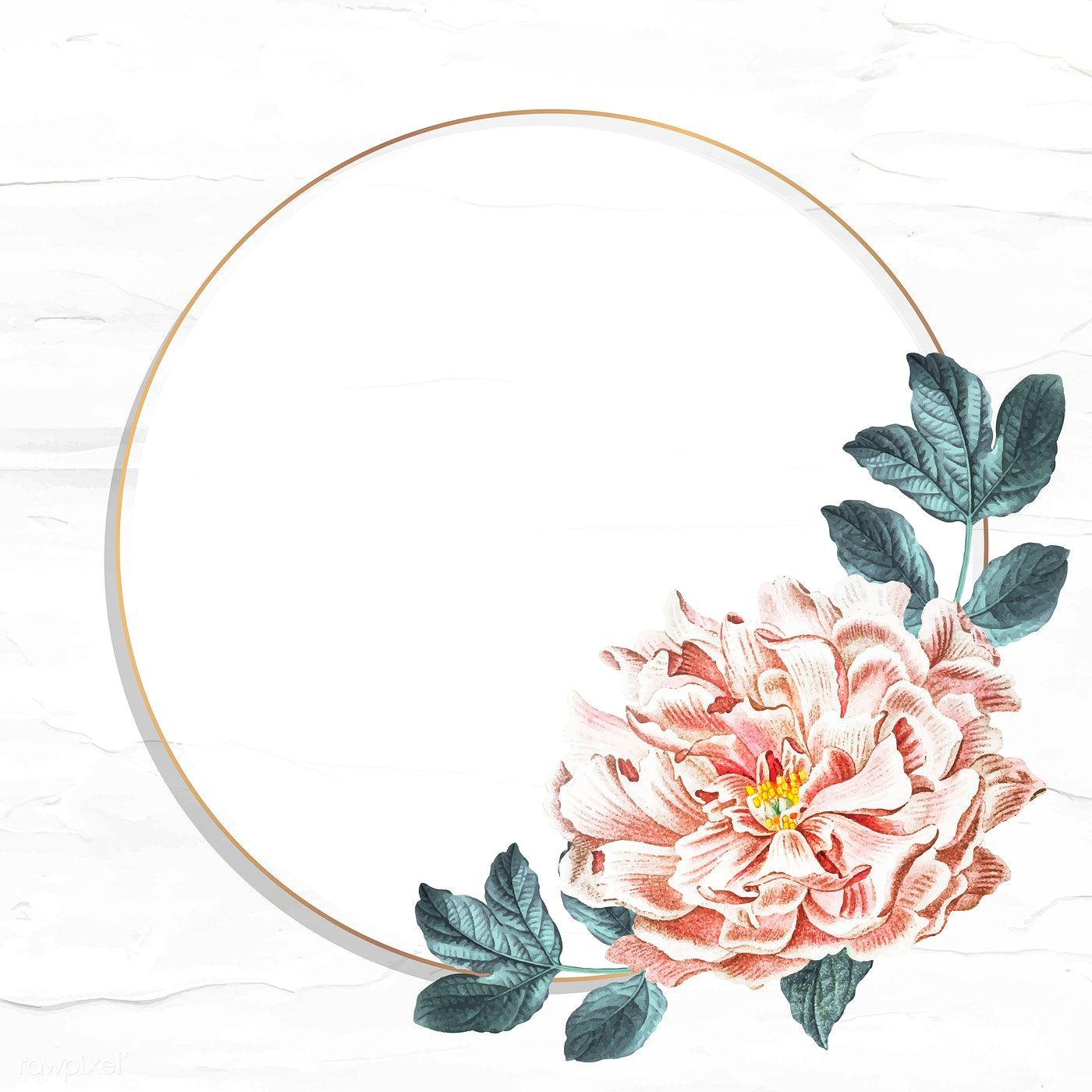Download premium vector of Round floral peony frame social