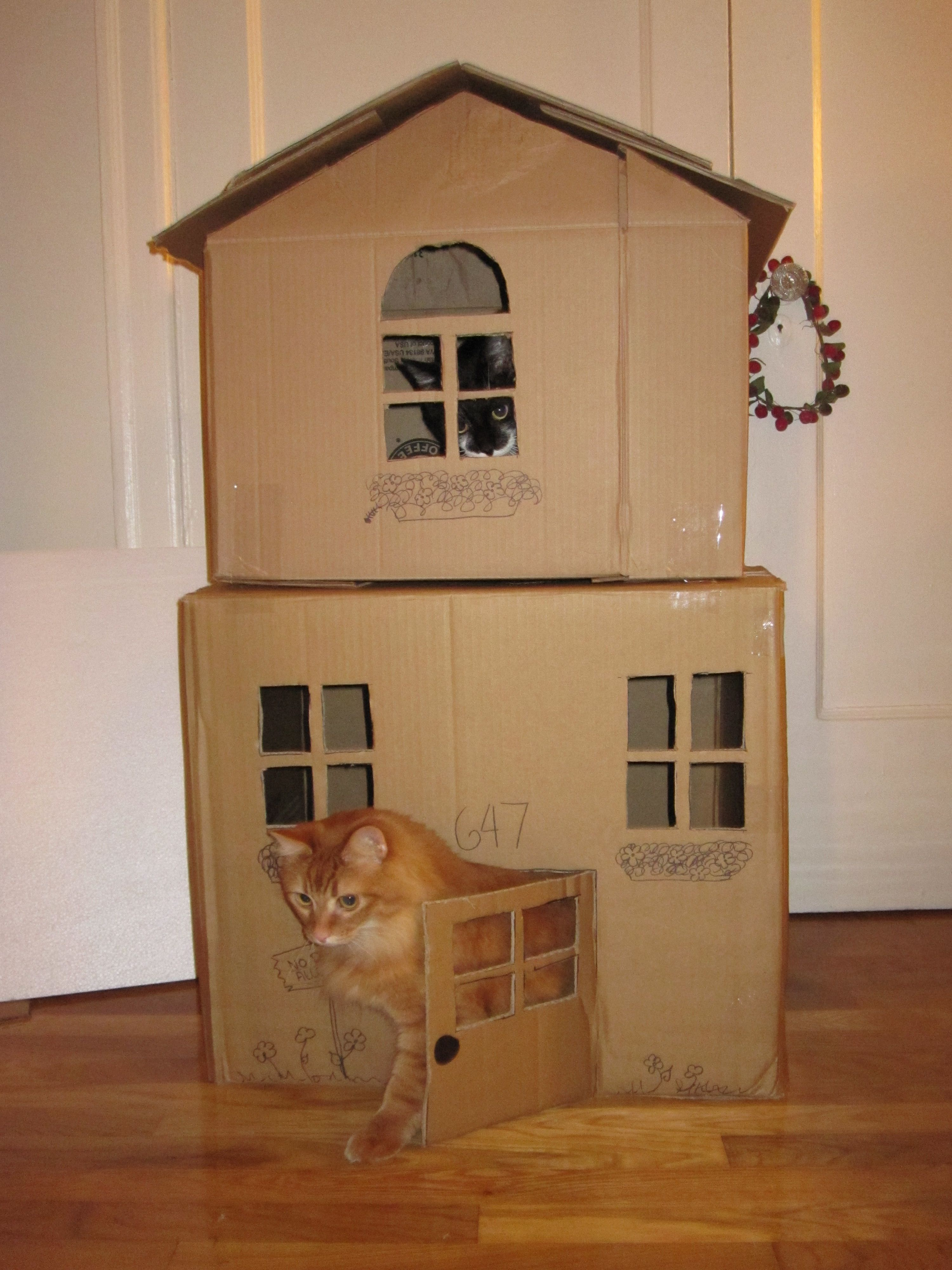 Cardboard House For Cats 2 Story Cat House I Made From Cardboard Boxes Pets Pinterest