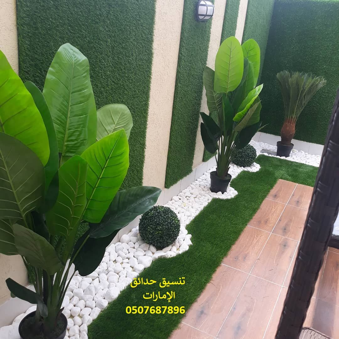 تنسيق حدائق فى الفجيرة 0507687896 تصميم حدائق منزلية وتركيب مظلات جلسات حدائق خارجية فى الامارات Plant Leaves Plants Instagram