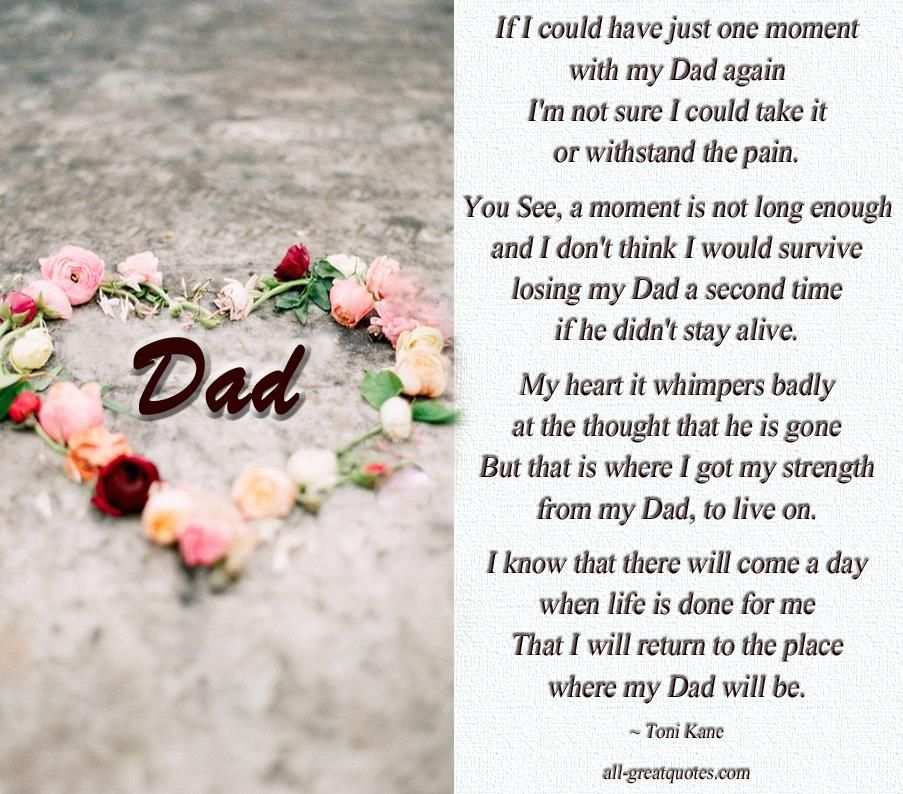 In Memory Dad Parent Daddy: If I Could Have Just One Moment With My Dad Again