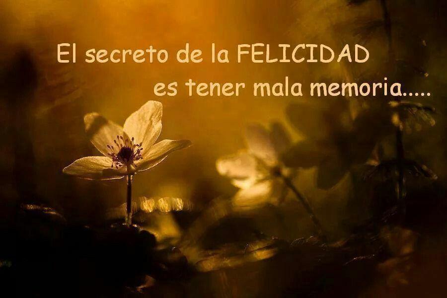El secreto de la felicidad.