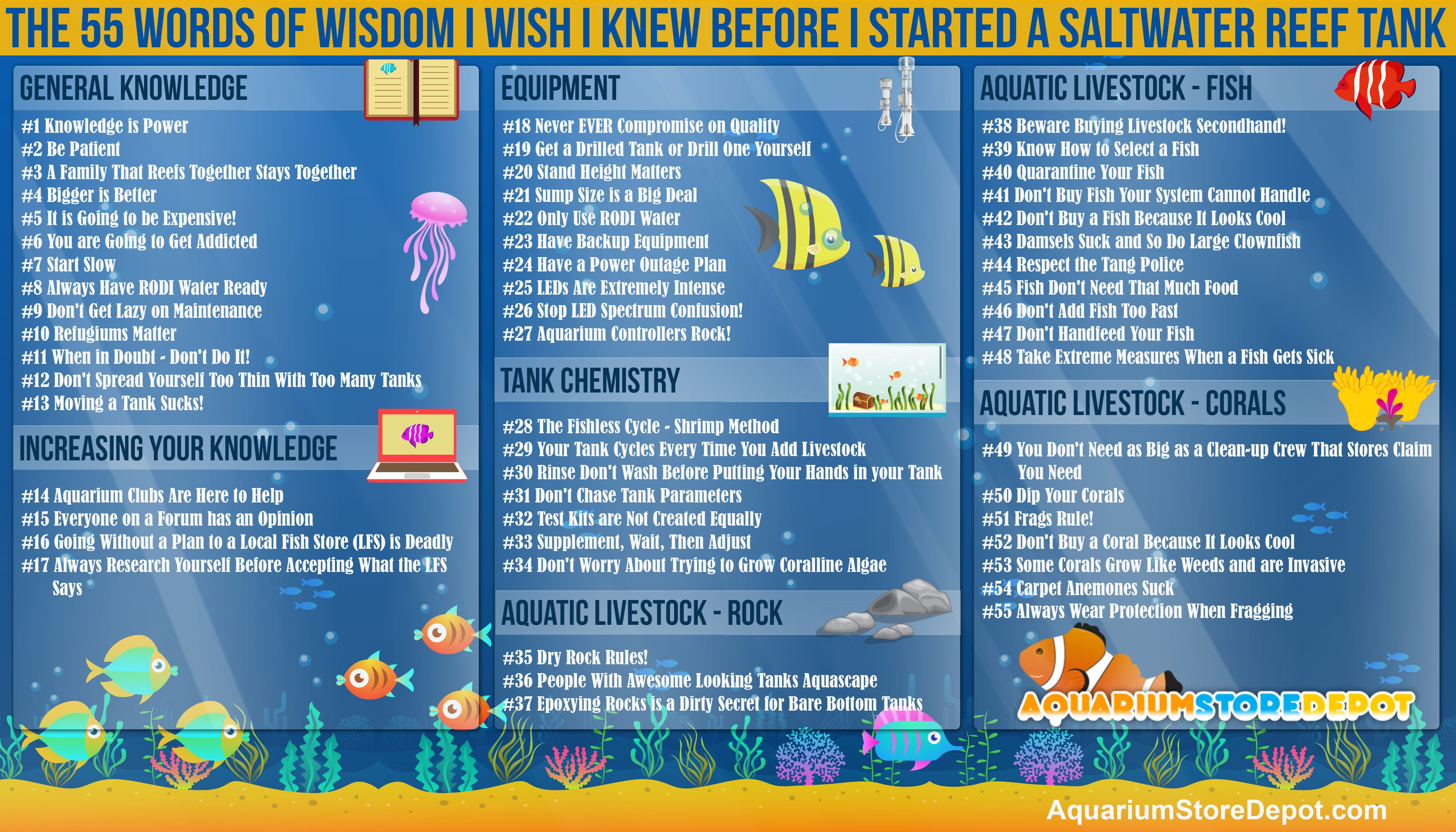 Water Parameters Chart Salt Tank Report In 2020 Saltwater Tank Cool Fish Tanks Fish Tank