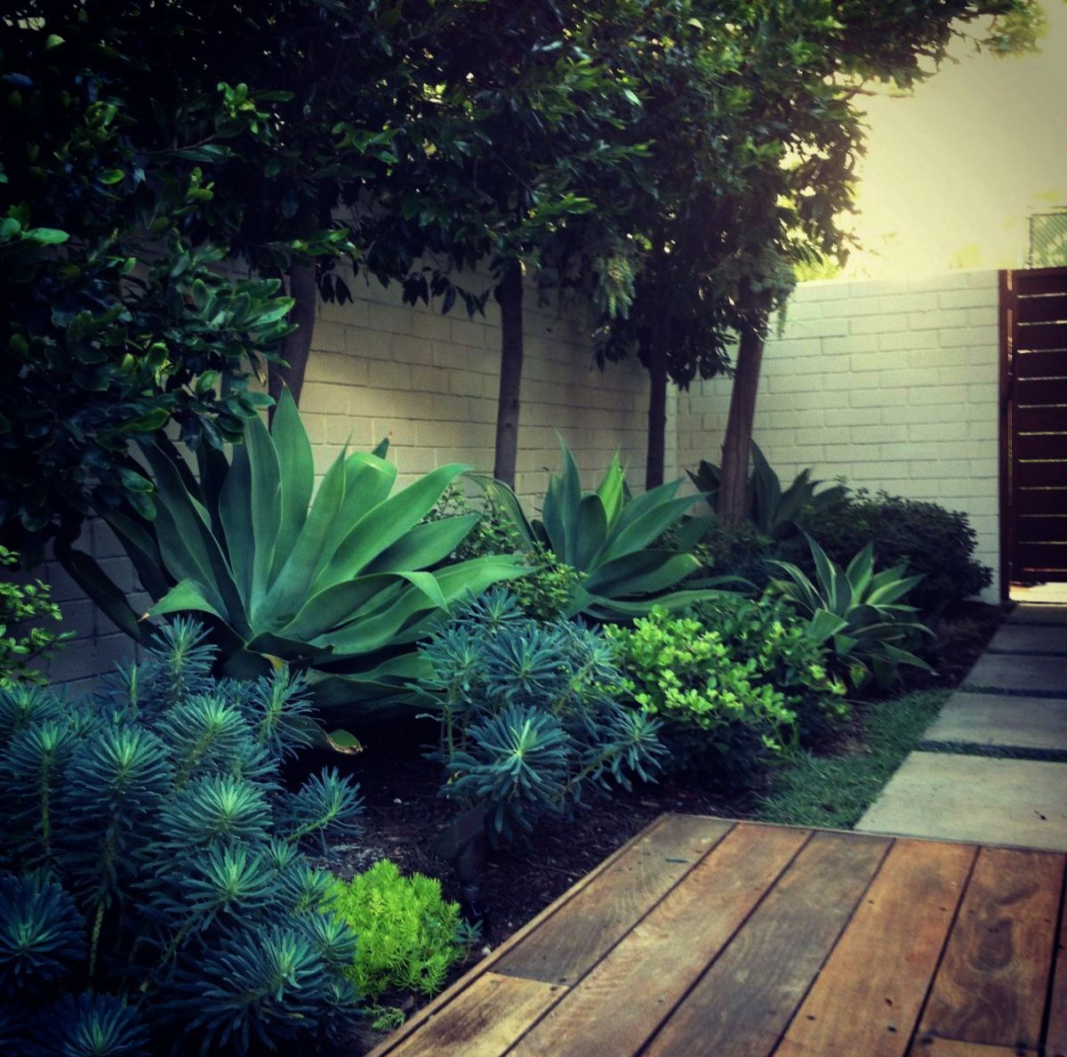 Pin By Lorena Carballo On Gardening In 2020 Planting Design Plan Garden Design Plans Planting Plan