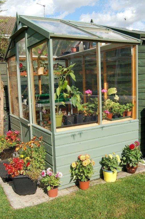 6 X 4 Evesham Wooden Greenhouse Wooden Greenhouses Small Garden Greenhouse Outdoor Gardens Design