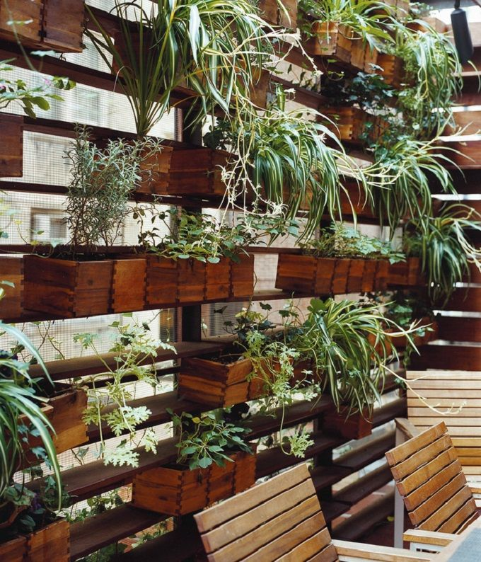Movable wooden planters on a plant wall zizmor house for Privacy wall planter