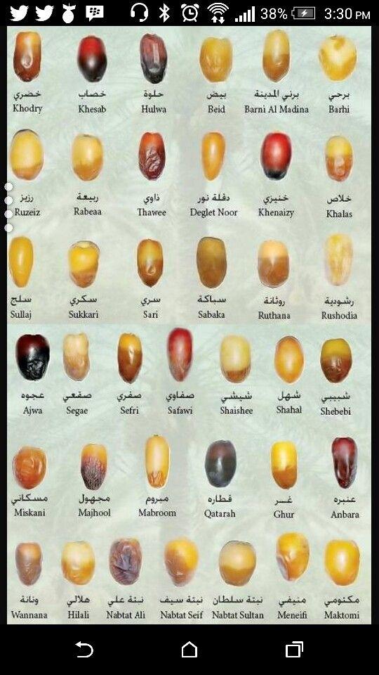 مسميات الرطب في الامارات Halal Recipes Arabic Food Types Of Dating